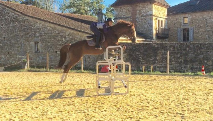 Photo n°1 Horses de Noirmont