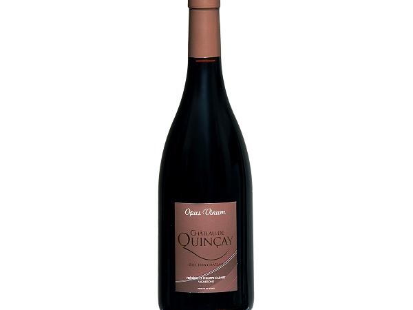 touraine-rge-chateau-de-quincay-23801