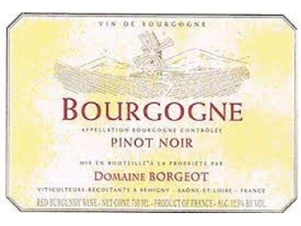 pinot-noir-domaine-borgeot-23929