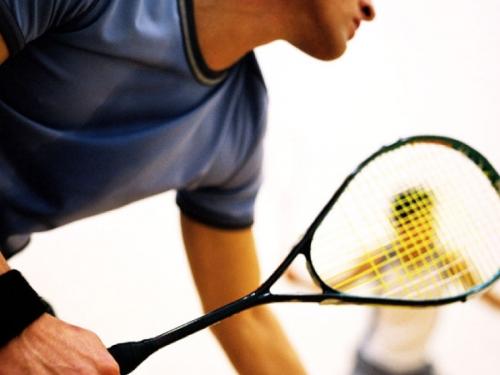 squash-31413