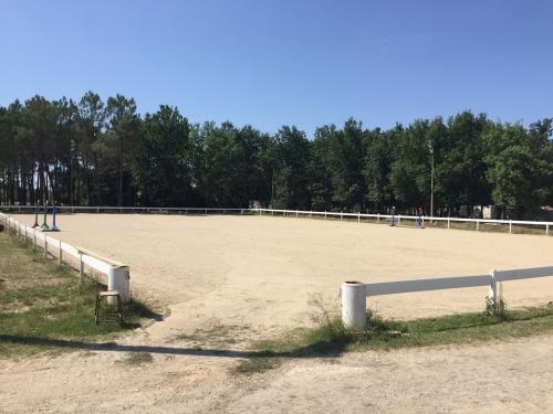 Pension chevaux poney Pré-Box Travail