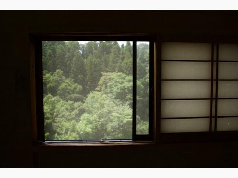 Les fenêtres Alu