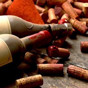 Audrey Delozanne